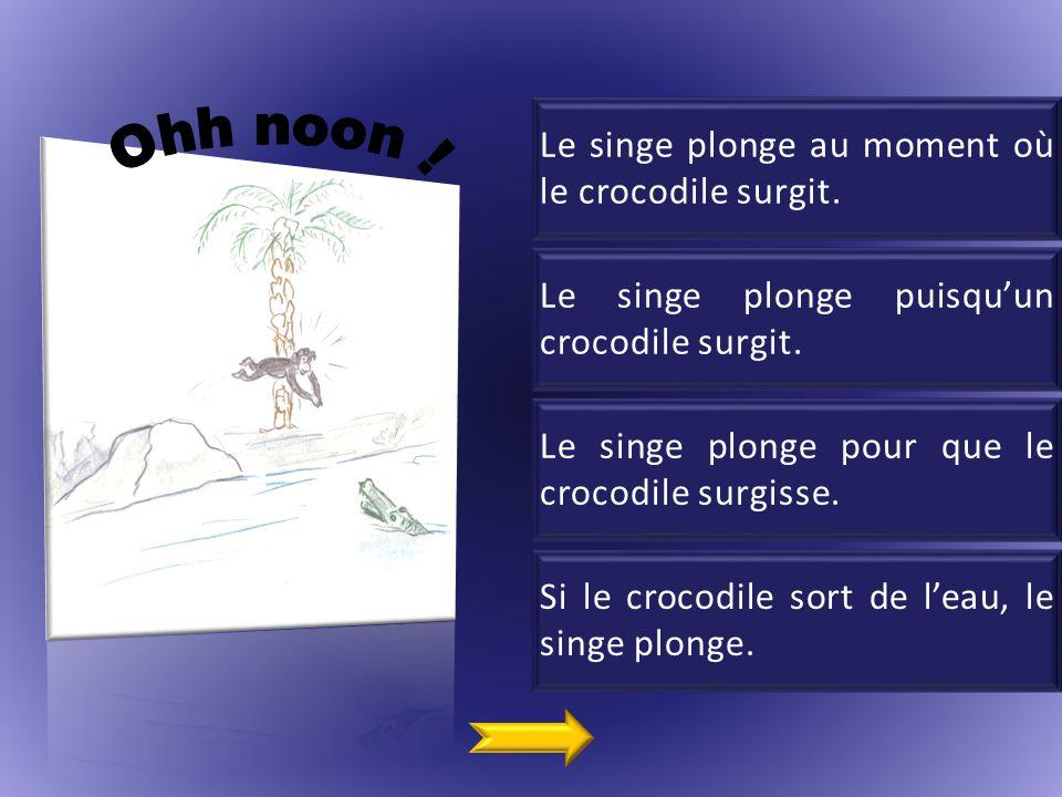 Ohh noon ! Le singe plonge au moment où le crocodile surgit.