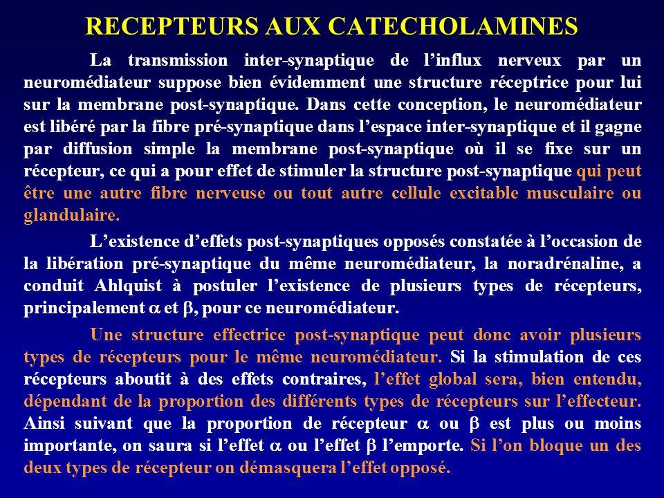 RECEPTEURS AUX CATECHOLAMINES