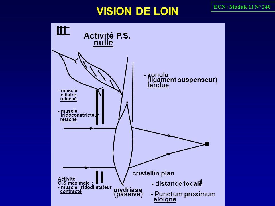 III VISION DE LOIN Activité P.S. nulle mydriase - distance focale