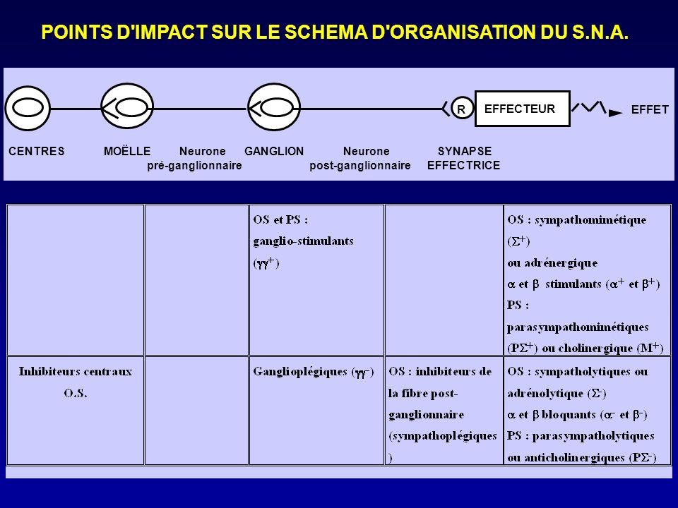 POINTS D IMPACT SUR LE SCHEMA D ORGANISATION DU S.N.A.
