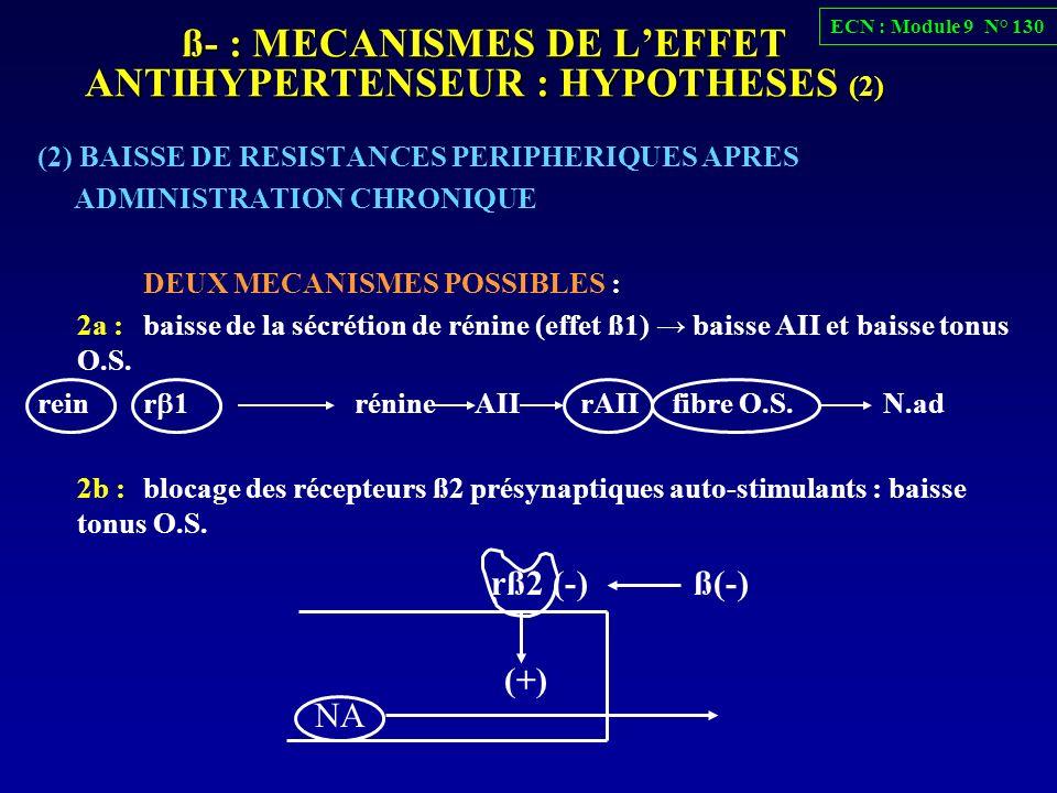 ß- : MECANISMES DE L'EFFET ANTIHYPERTENSEUR : HYPOTHESES (2)