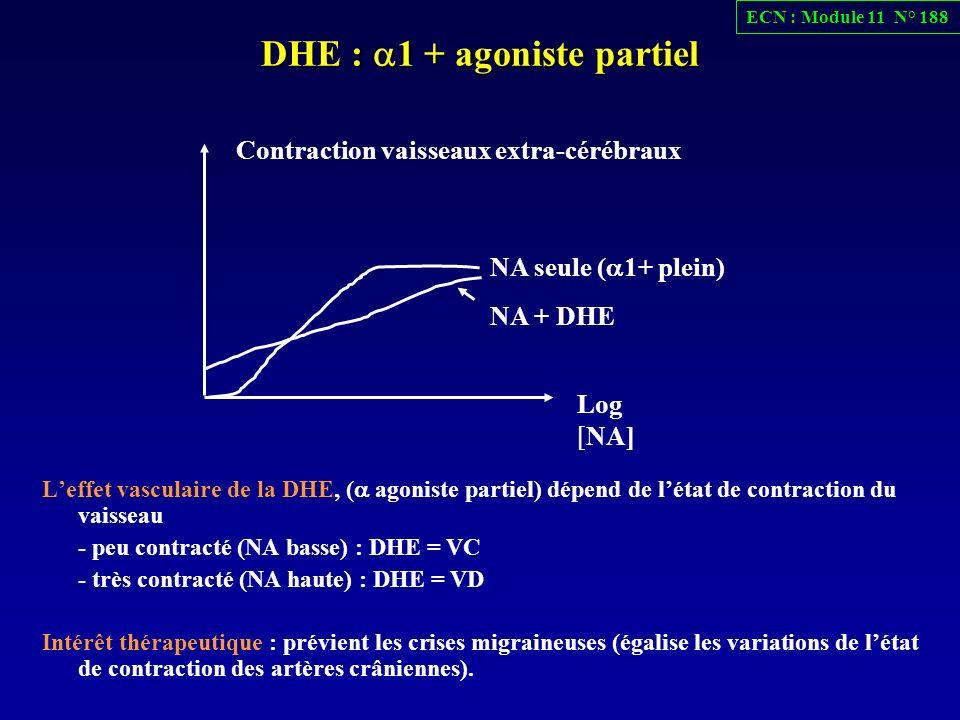 DHE : a1 + agoniste partiel