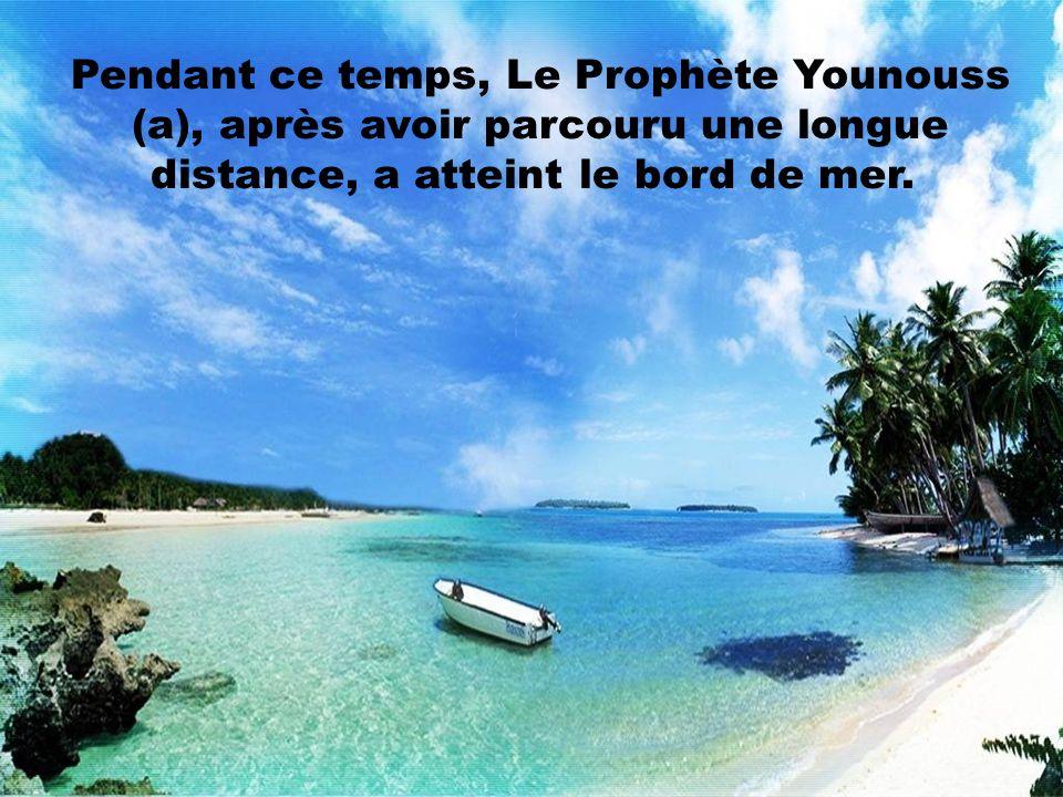 Pendant ce temps, Le Prophète Younouss (a), après avoir parcouru une longue distance, a atteint le bord de mer.