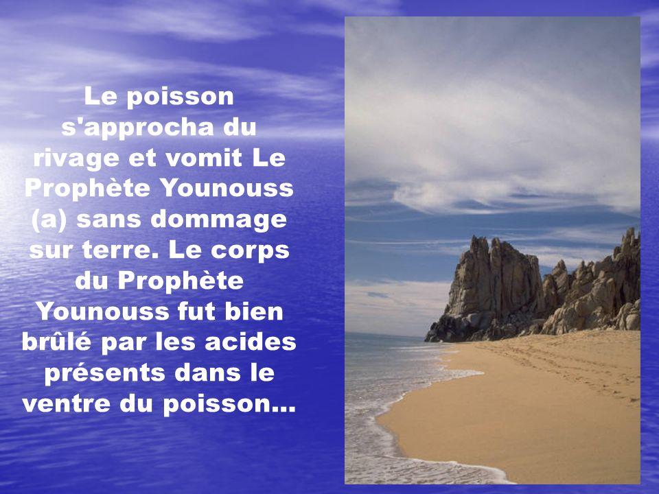 Le poisson s approcha du rivage et vomit Le Prophète Younouss (a) sans dommage sur terre.