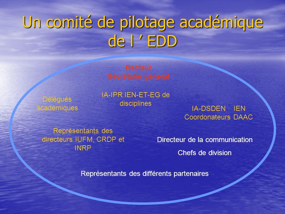 Un comité de pilotage académique de l ' EDD