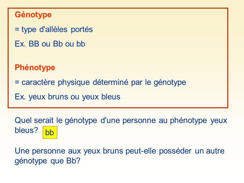 Génotype= type d allèles portés. Ex. BB ou Bb ou bb. Phénotype. = caractère physique déterminé par le génotype.