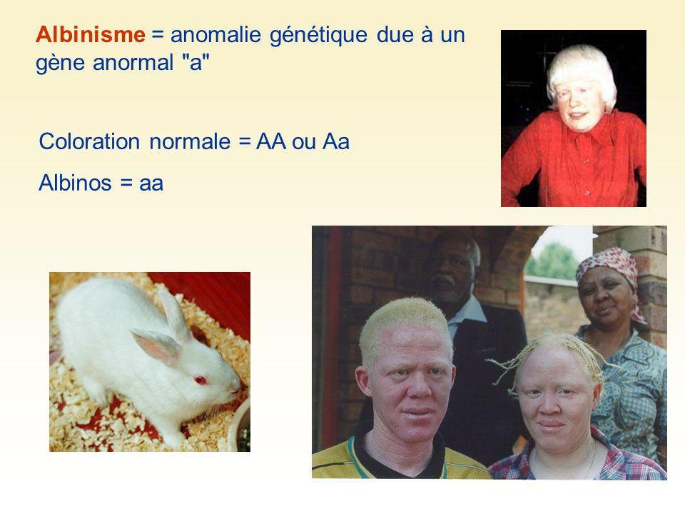 Albinisme = anomalie génétique due à un gène anormal a