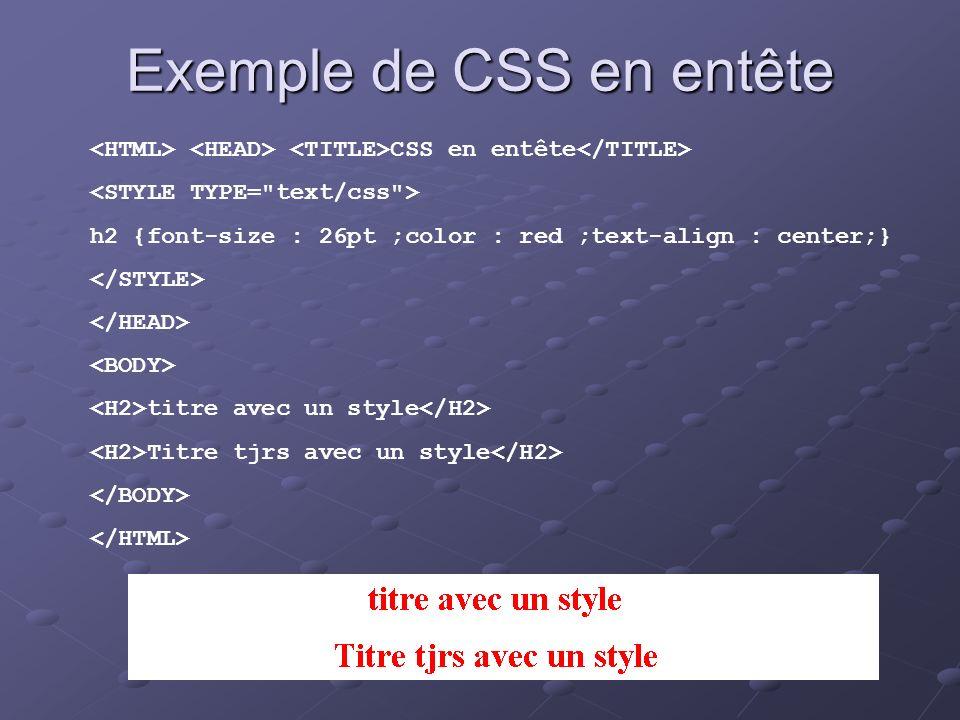 Exemple de CSS en entête