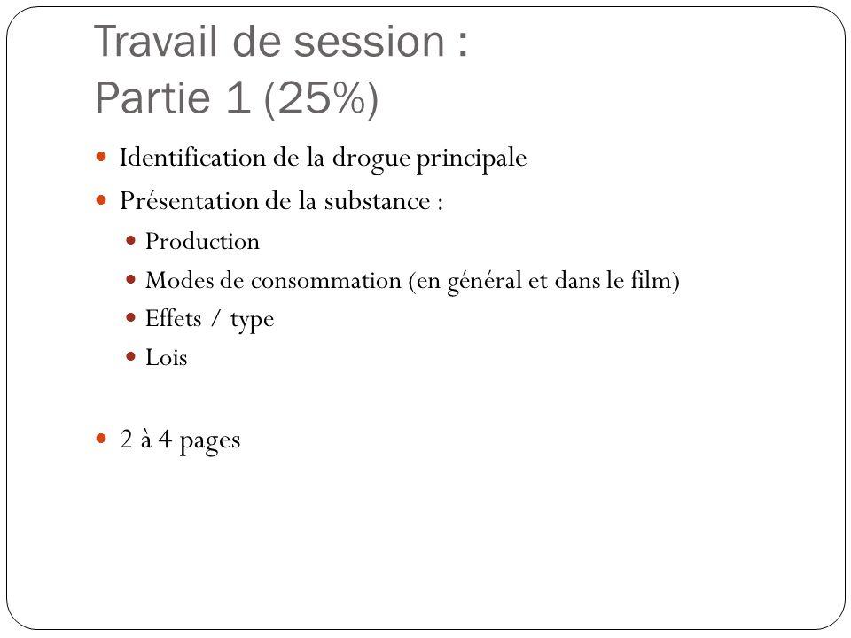 Travail de session : Partie 1 (25%)