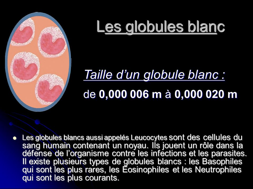 Les globules blanc Taille d'un globule blanc :