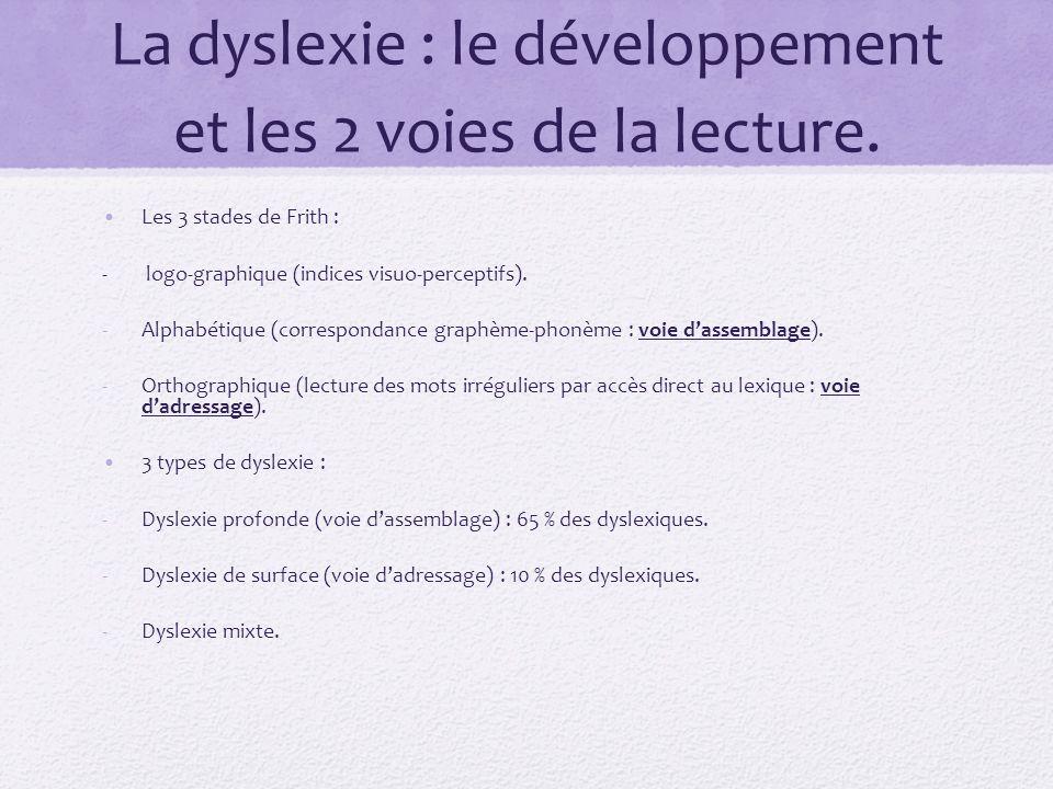 La dyslexie : le développement et les 2 voies de la lecture.