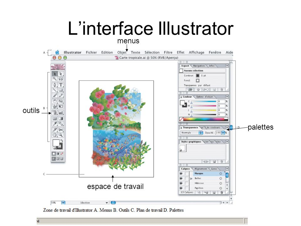 L'interface Illustrator