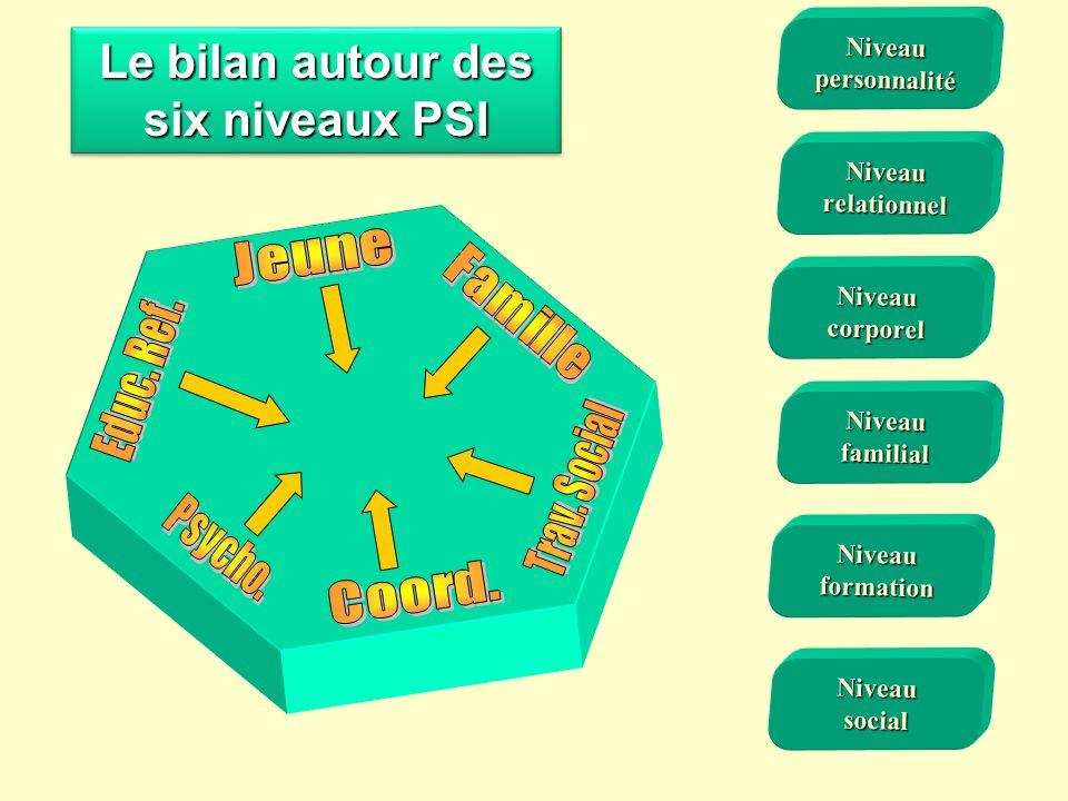 Le bilan autour des six niveaux PSI