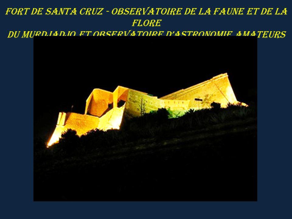Fort de Santa Cruz - Observatoire de la faune et de la flore