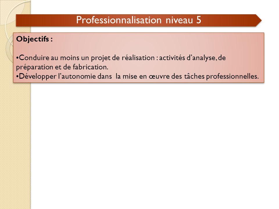 Professionnalisation niveau 5