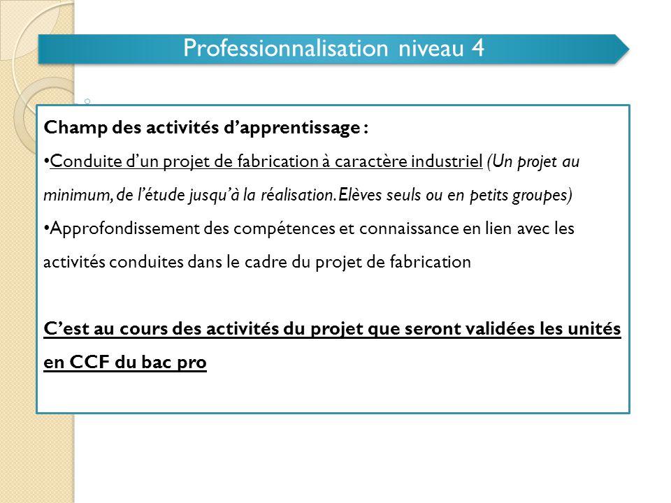 Professionnalisation niveau 4
