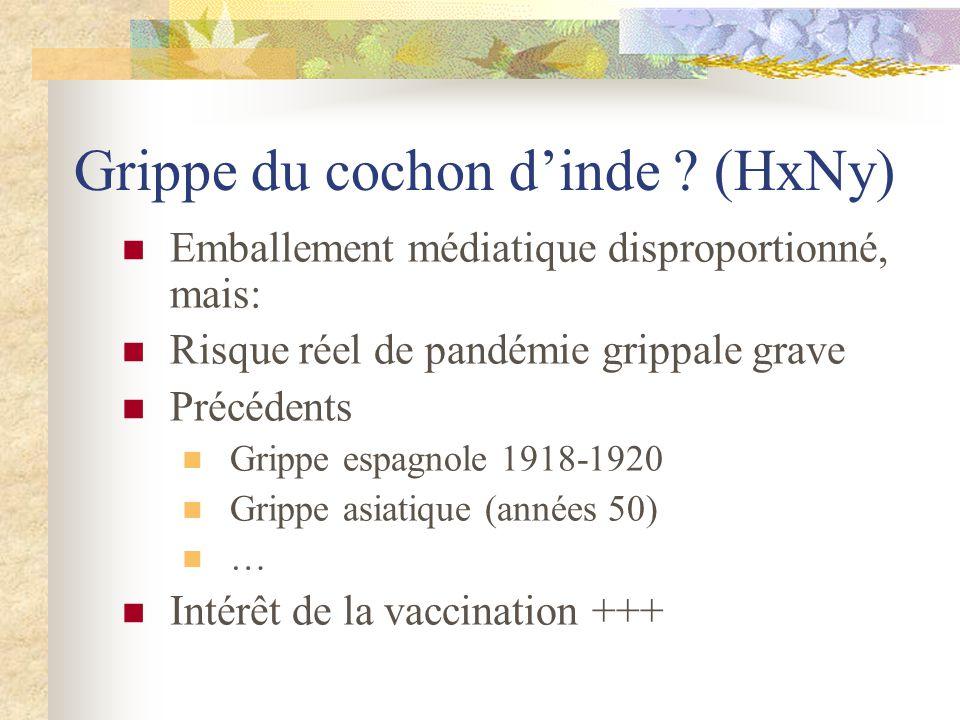 Grippe du cochon d'inde (HxNy)