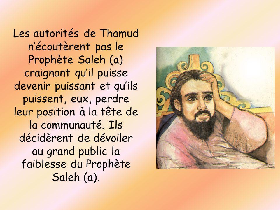 Les autorités de Thamud n'écoutèrent pas le Prophète Saleh (a) craignant qu'il puisse devenir puissant et qu'ils puissent, eux, perdre leur position à la tête de la communauté.