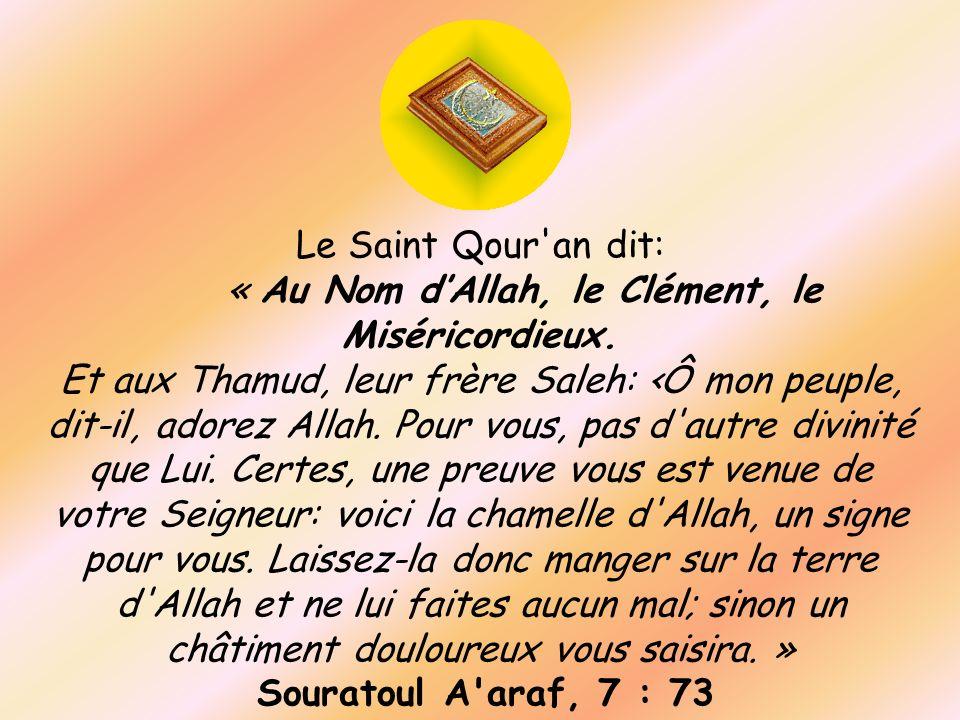 « Au Nom d'Allah, le Clément, le Miséricordieux.