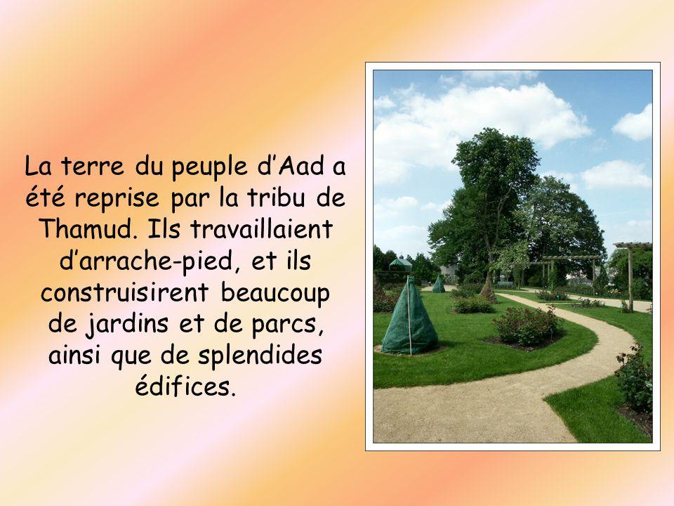 La terre du peuple d'Aad a été reprise par la tribu de Thamud