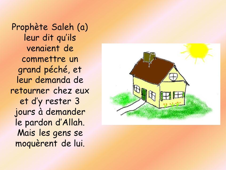 Prophète Saleh (a) leur dit qu'ils venaient de commettre un grand péché, et leur demanda de retourner chez eux et d'y rester 3 jours à demander le pardon d'Allah.
