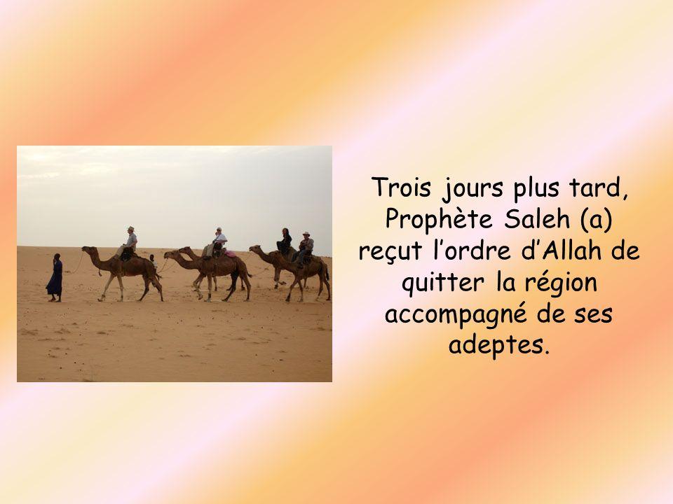 Trois jours plus tard, Prophète Saleh (a) reçut l'ordre d'Allah de quitter la région accompagné de ses adeptes.