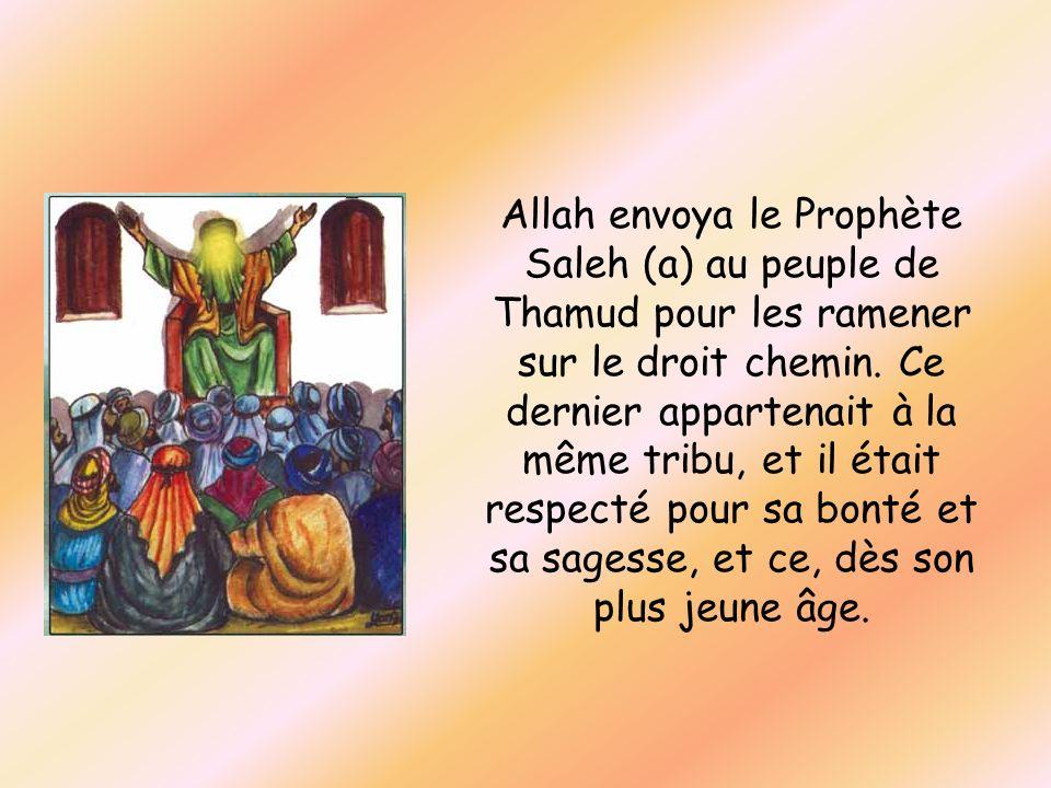 Allah envoya le Prophète Saleh (a) au peuple de Thamud pour les ramener sur le droit chemin.