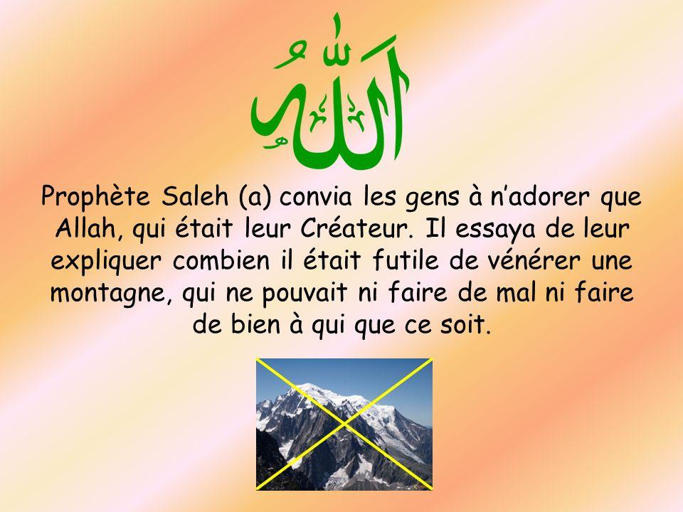 Prophète Saleh (a) convia les gens à n'adorer que Allah, qui était leur Créateur.