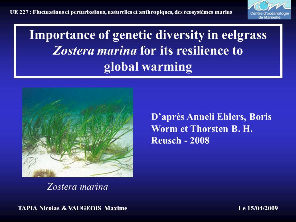 TAPIA Nicolas & VAUGEOIS Maxime Le 15/04/2009