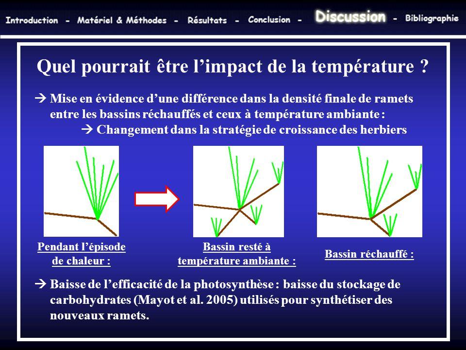 Quel pourrait être l'impact de la température