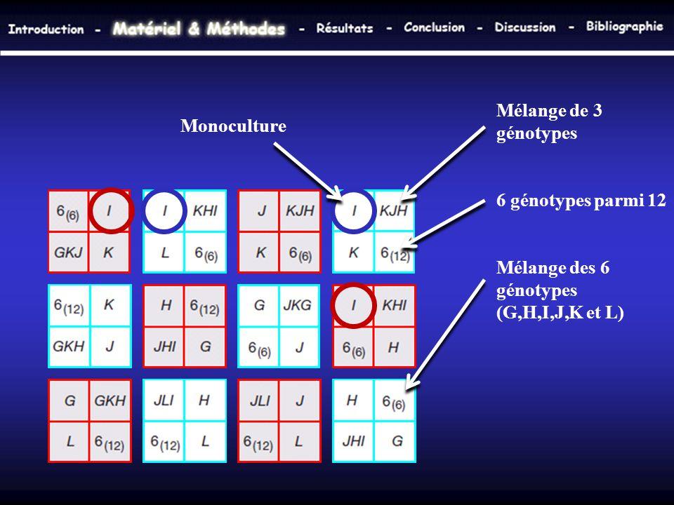 Mélange de 3 génotypes 6 génotypes parmi 12. Mélange des 6 génotypes (G,H,I,J,K et L)