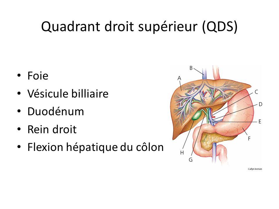 Quadrant droit supérieur (QDS)