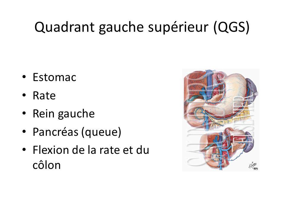 Quadrant gauche supérieur (QGS)