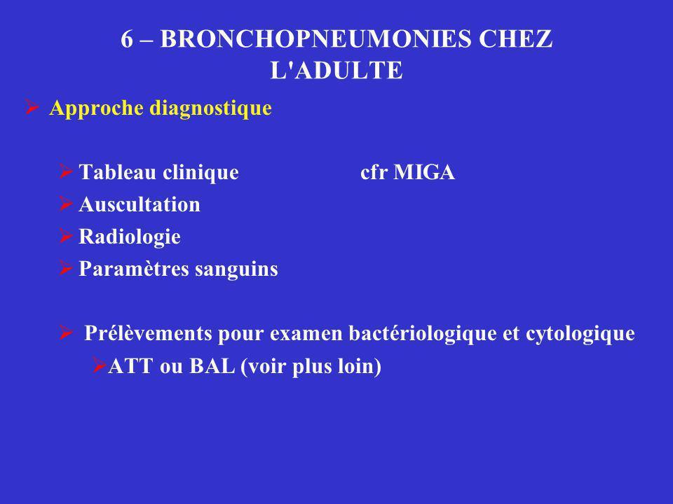 6 – BRONCHOPNEUMONIES CHEZ L ADULTE