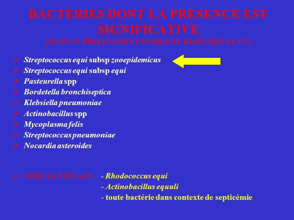 BACTERIES DONT LA PRESENCE EST SIGNIFICATIVE (DANS UN PRELEVEMENT D ORIGINE RESP CHEZ LE CV)