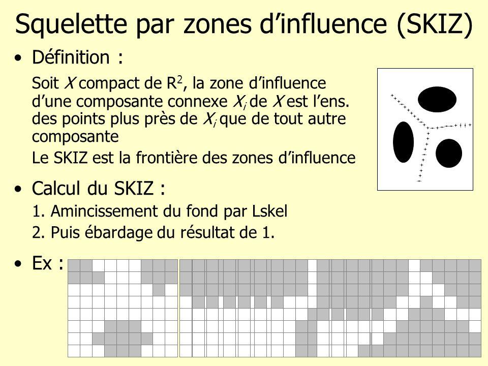 Squelette par zones d'influence (SKIZ)