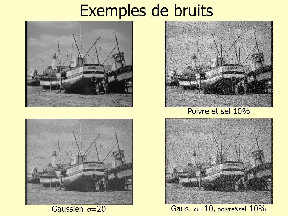Exemples de bruits Poivre et sel 10% Gaussien s=20