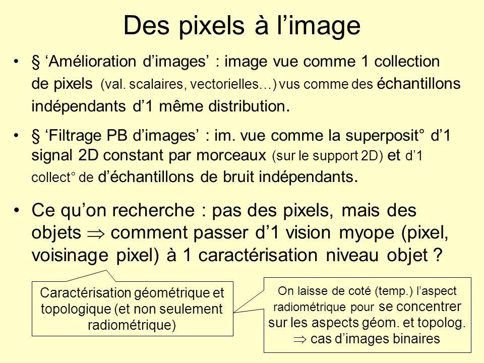 Des pixels à l'image