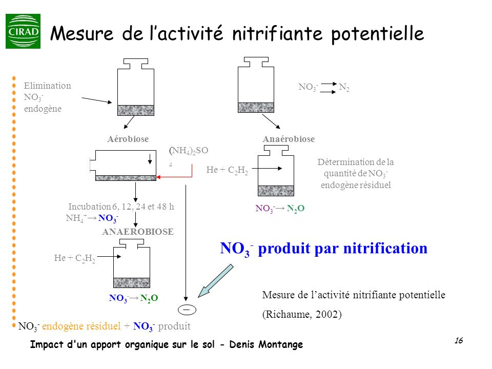 Mesure de l'activité nitrifiante potentielle