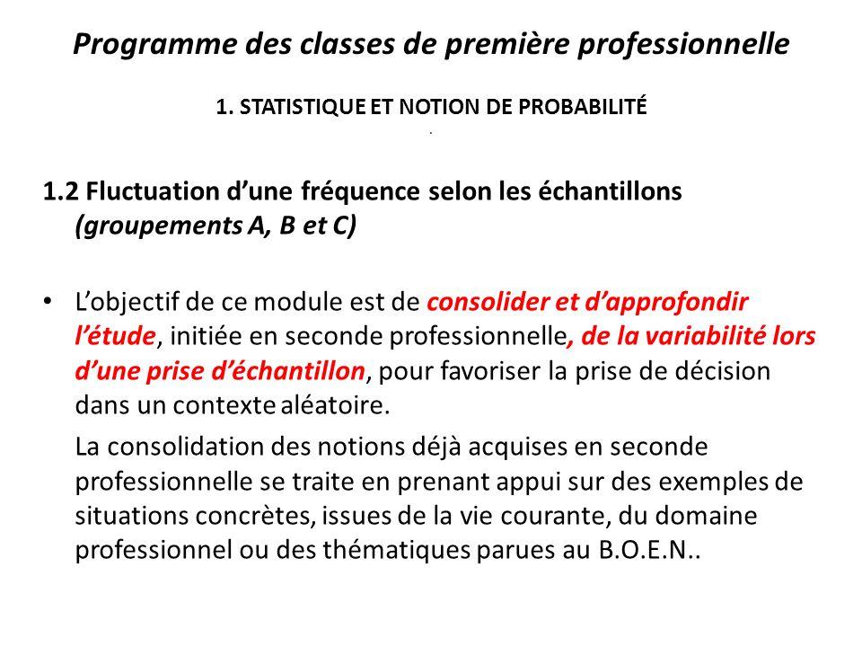 Programme des classes de première professionnelle 1