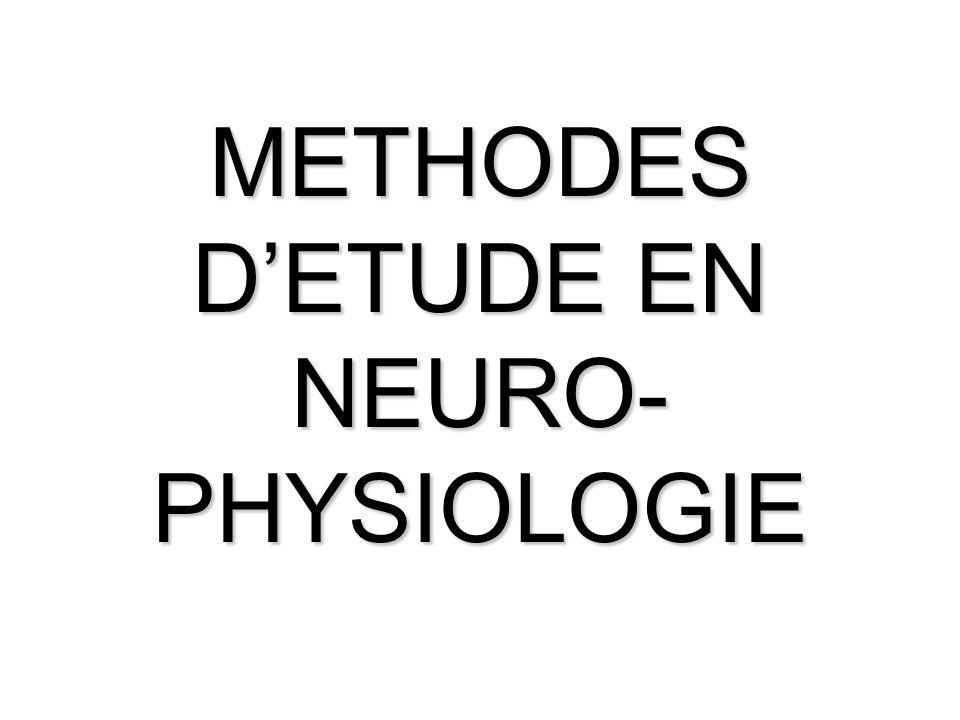 METHODES D'ETUDE EN NEURO-PHYSIOLOGIE