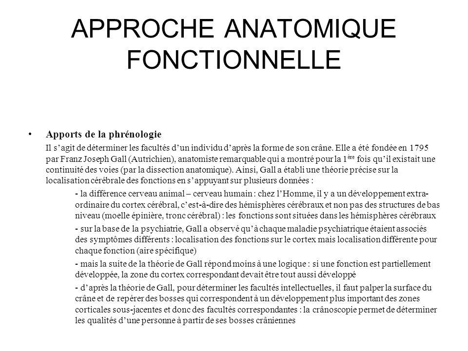 APPROCHE ANATOMIQUE FONCTIONNELLE