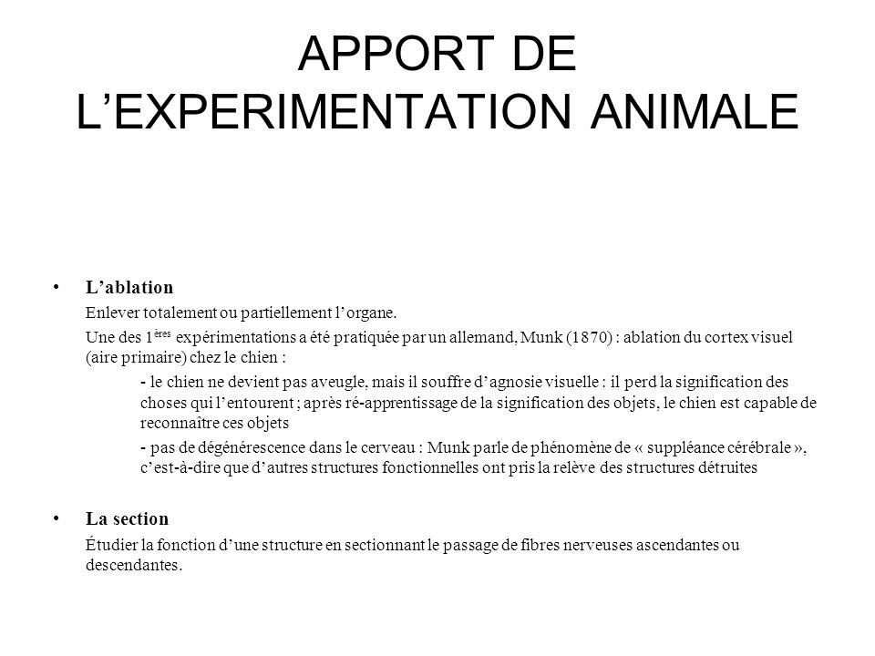 APPORT DE L'EXPERIMENTATION ANIMALE