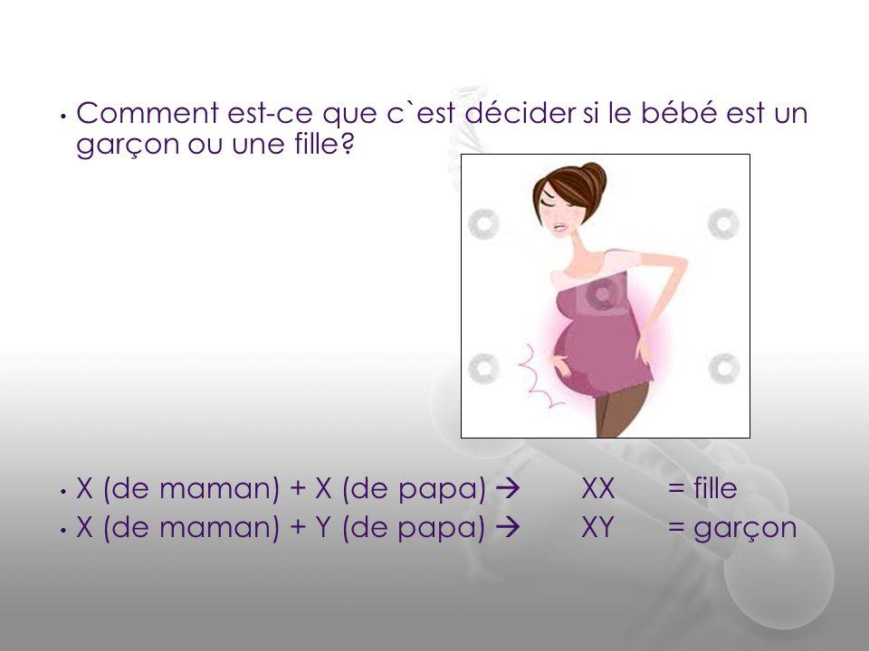 Comment est-ce que c`est décider si le bébé est un garçon ou une fille
