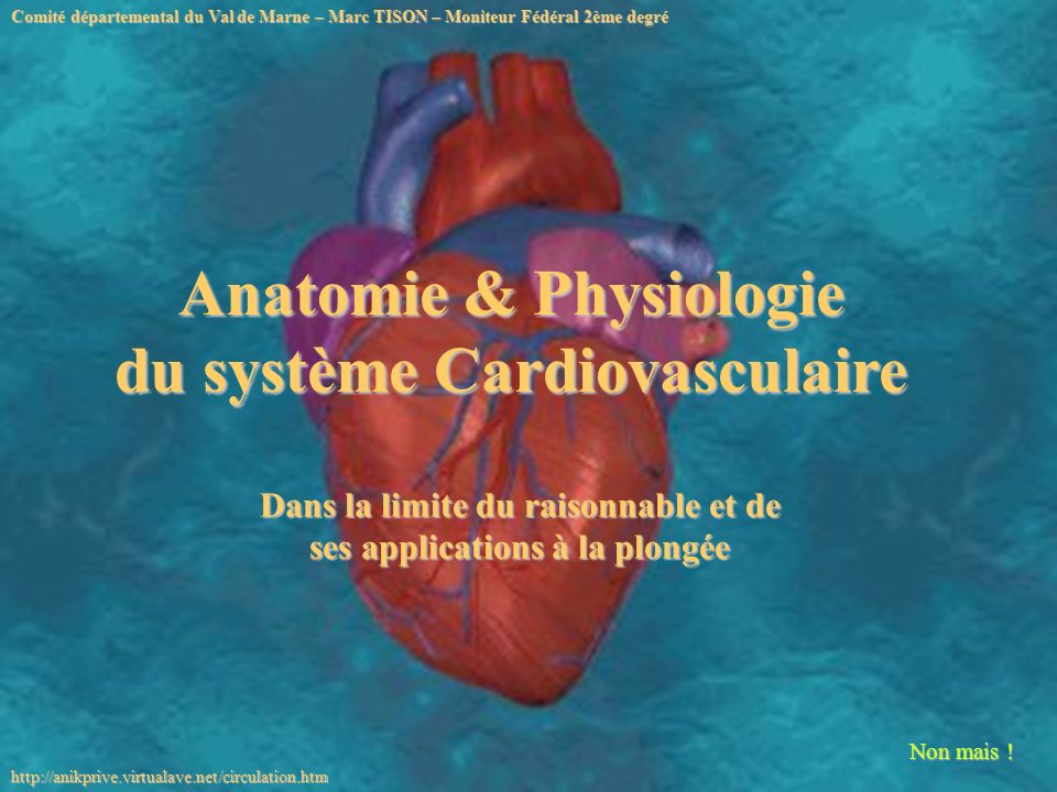Anatomie & Physiologie du système Cardiovasculaire