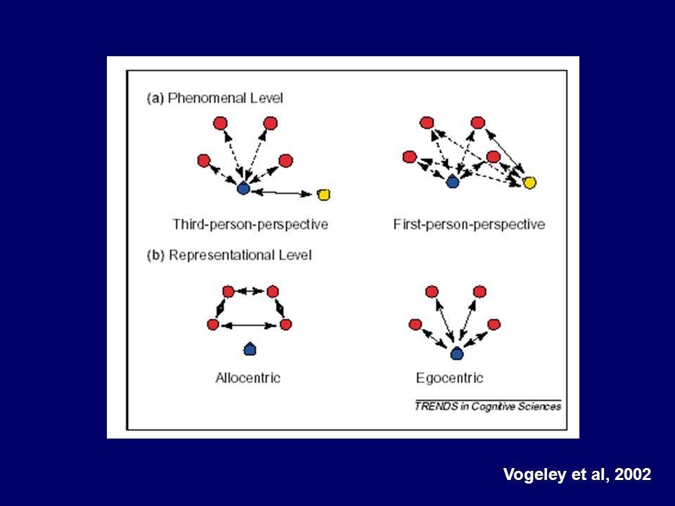 Vogeley et al, 2002