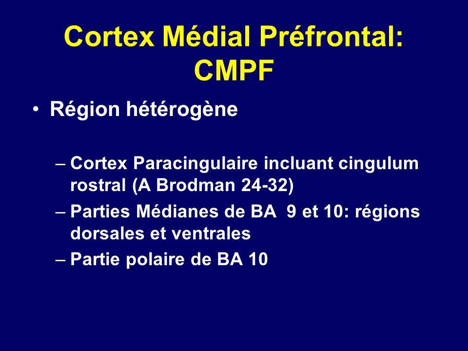 Cortex Médial Préfrontal: CMPF