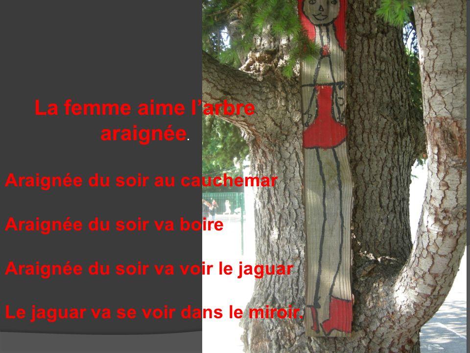 La femme aime l'arbre araignée.
