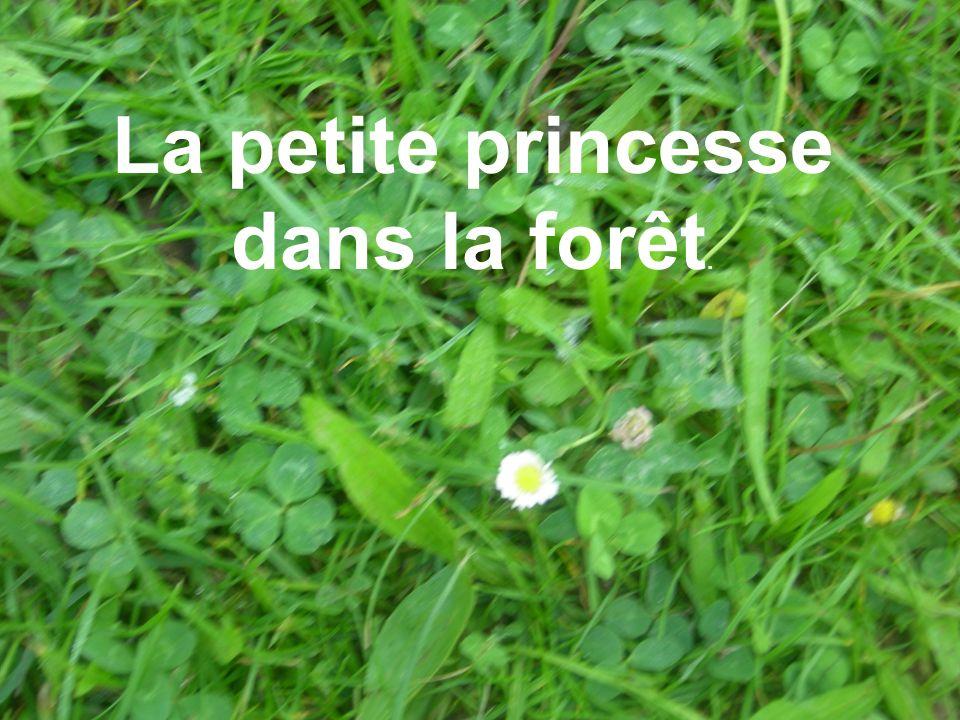 La petite princesse dans la forêt.