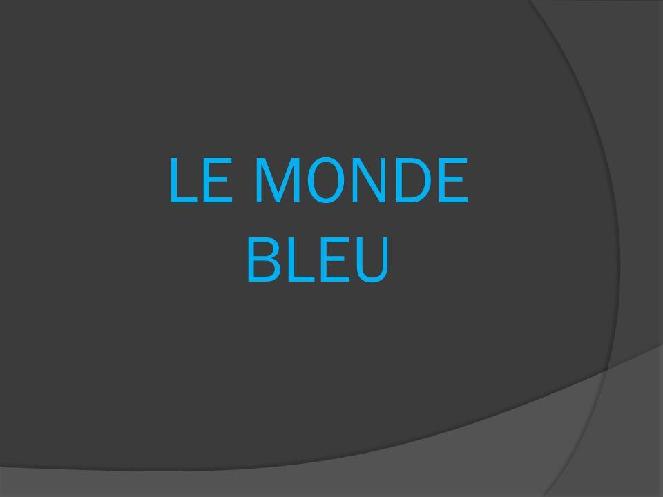LE MONDE BLEU
